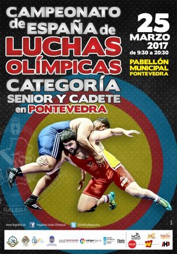 CARTEL CAMPEONATO DE ESPAÑA 2017